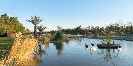 Abri Cosy Parc