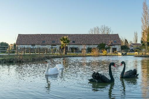 Chambre d'hote Gard - Parc
