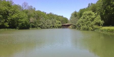 Gîte La Maison Forestière L'étang