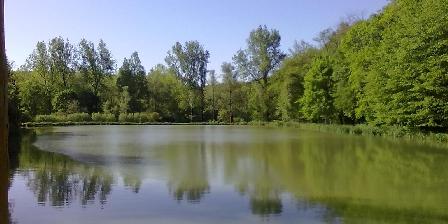 Gîte La Maison Forestière L'étang vu de la terrasse