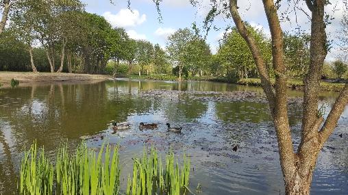 Accès Parc avec étang