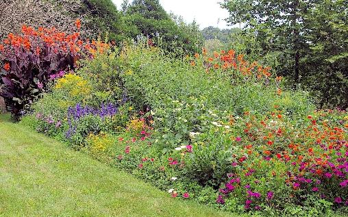 Chambre d'hote Pyrénées-Atlantiques - jardin