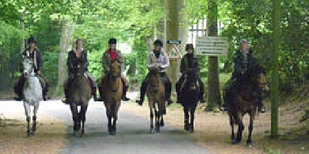 Gite de La Pointe Ridel Gite de La Pointe Ridel Randonnée à cheval