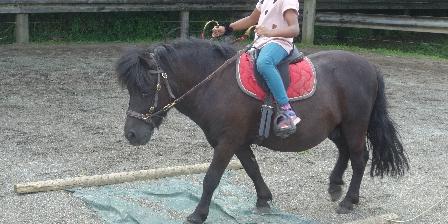Gite de La Pointe Ridel Gite de La Pointe Ridel Petis cavaliers, petits poneys