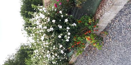 Gite de Lavaud Richer Jardin fleuri selon saison