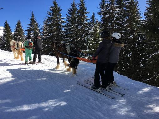 ski jöring à Super -Morzine