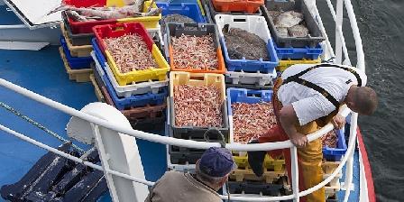 Le Reun Maryvonne Retour de pêche Au Guilvinec