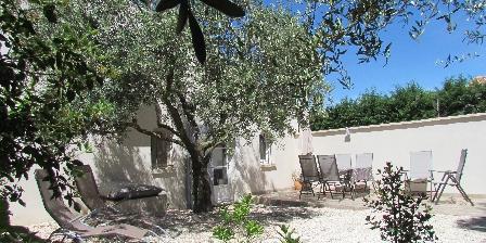 Gîte du Cigalon en Provence Repos sous l'olivier cigalon