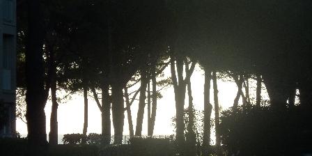 Appartement à Argelès Sur Mer Les pins en bord de mer