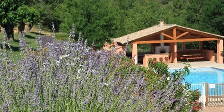 Gîte des Olives 4 étoiles en Provence Piscine et pool house