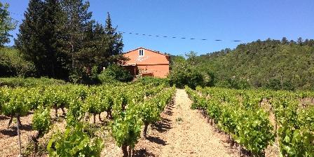 Gîte des Olives 4 étoiles en Provence Vignoble