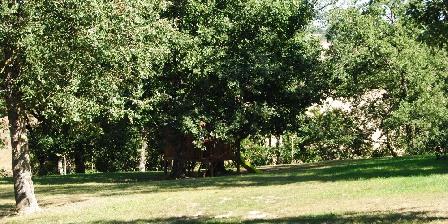 L'Occitane Jardin avec cabane dans les arbres