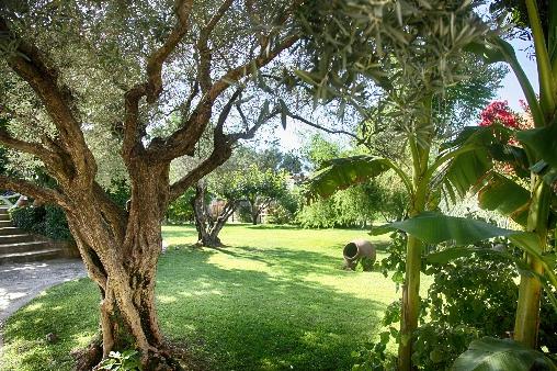 Le jardin de la Bastide