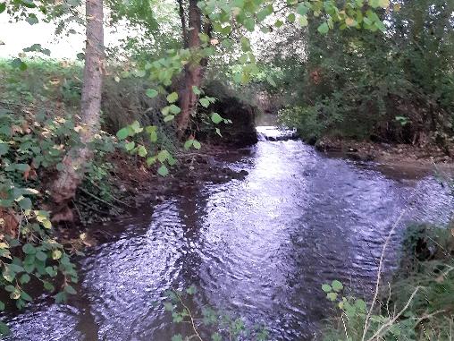 Rivière au fond du jardin