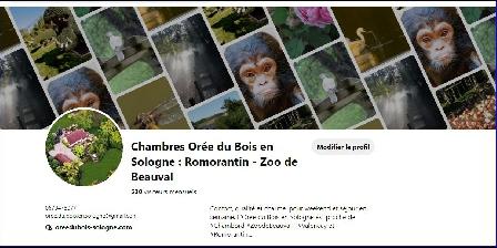 Chambre de Charme Romorantin et Zoo de Beauval Zoo de Beauval tout proche de l'Orée du Bois en Sologne...