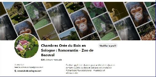 Chambre d'hote Loir-et-Cher - Zoo de Beauval tout proche de l'Orée du Bois en Sologne...