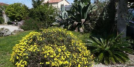 Location Saisonnière Villa Les Cactées Jardin