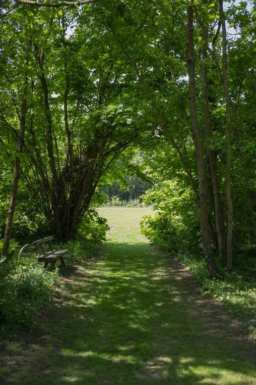 Chambre d'hote Côtes-d'Armor - Parc paysager