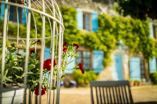 Chambre d'hote Gard - La Cour du Mas en été