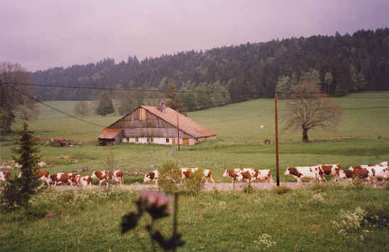 Bed & breakfasts Doubs, Combes (25500 Doubs)....