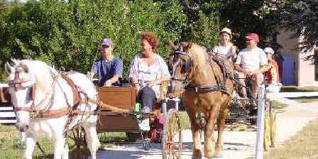 Le Petit Labouret Accueil des cavaliers de passage