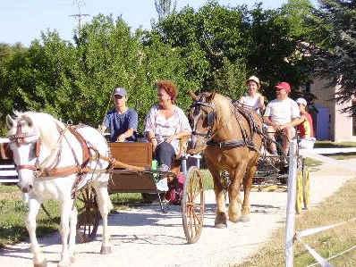 Chambre d'hote Alpes de Haute Provence - accueil des cavaliers de passage