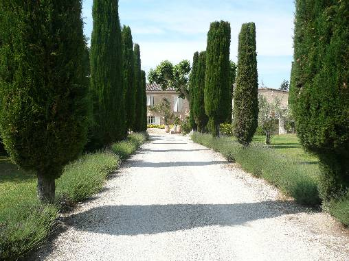 Chambre d'hote Vaucluse - Entrée du mas