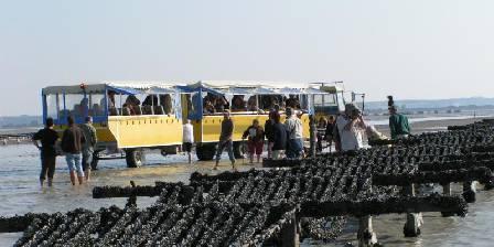 Train marin