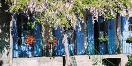 Le Jardin des Glycines Les glycines
