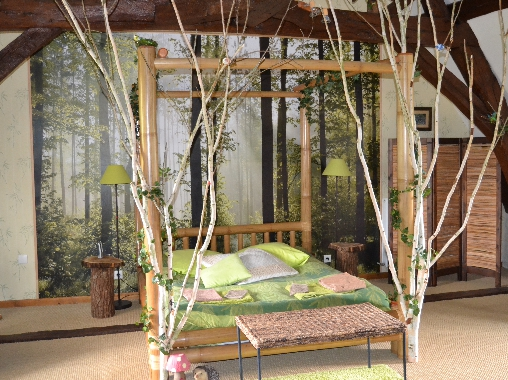 bed & breakfast Indre-et-Loire - enchanted forest