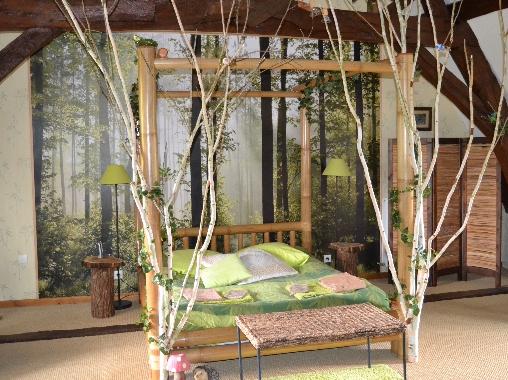 Chambre d'hote Indre-et-Loire - Chambre forêt enchantée