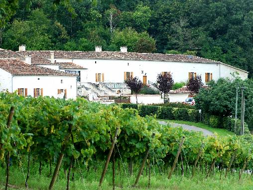bed & breakfast Charente - The facade and its terrace facing vineyards