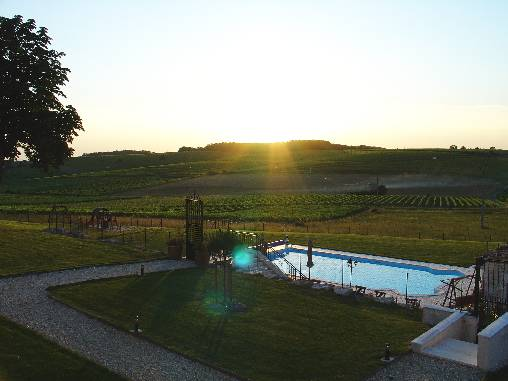 bed & breakfast Charente - The swimming pool facing vineyards