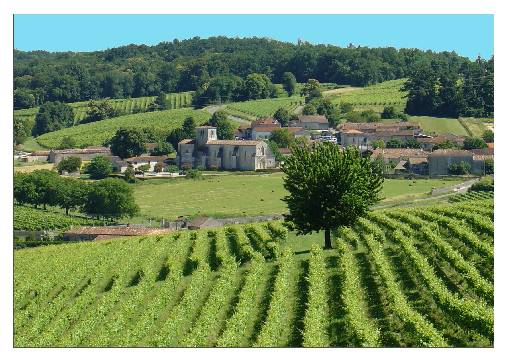 bed & breakfast Charente - Panorama near Le Relais