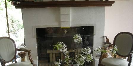 Les Hauts de La Vaucouleurs Fireplace
