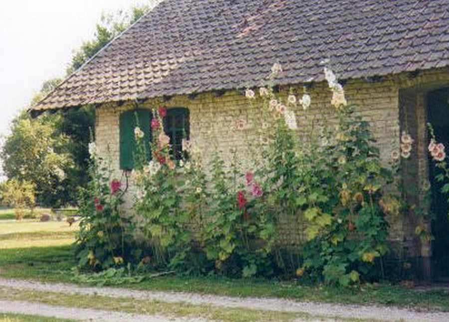 Manoir de Bois en Ardres  Une chambre dhotes dans le Pas  ~ Manoir Bois De Boulogne