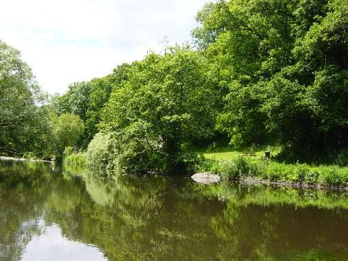 La rivière (Le Trieux) tout près de chez nous