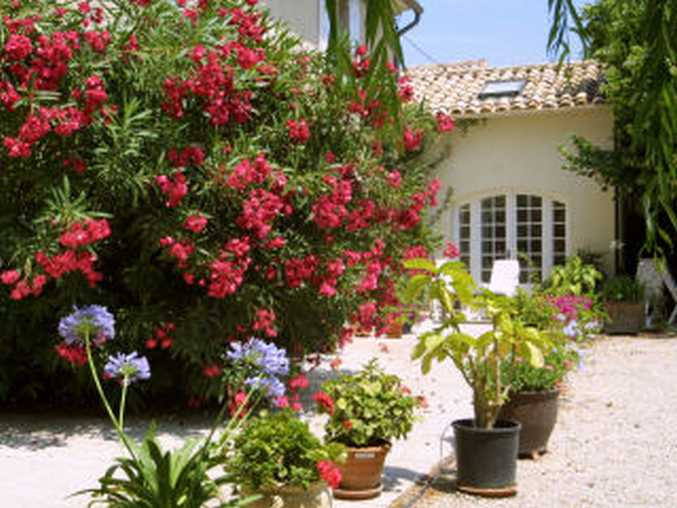 bed & breakfast Vaucluse - Gite