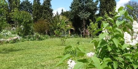 Mas Saint Pierre Une partie du parc de 8000m² et les lilas.