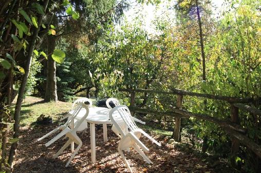 Une terrasse sous les arbres