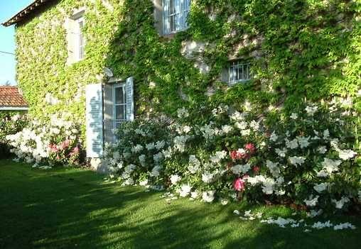 Gastezimmer Loire, ab 49 €/Nuit. Haus mit Charakter, Saint Romain le Puy (42610 Loire), Charme, Garten, Zugang für Behinderte, WiFi, Ausstattung Baby, 1 schlafzimmer einzelne(n) , 2 schlafzimmer double(s), 1 suite(...