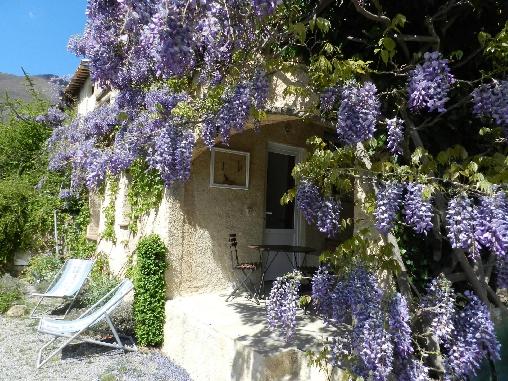 bed & breakfast Alpes de Haute Provence - au printemps