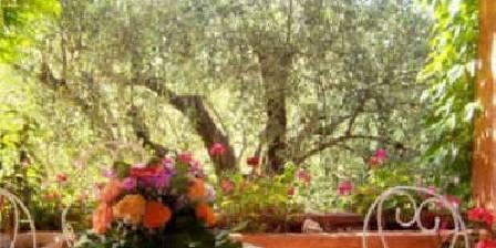 Bastide Rose de Mai Vue de la terrasse