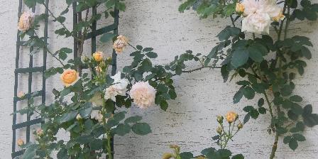 La Grosse Haie Saison des roses