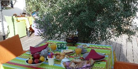 Trésors des Dunes PDJ en terrasse sous l'olivier