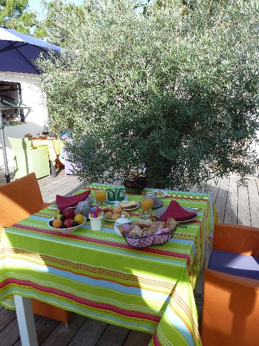 PDJ en terrasse sous l'olivier